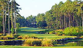 Tigers Eye Golf Course in Ocean Ridge Community